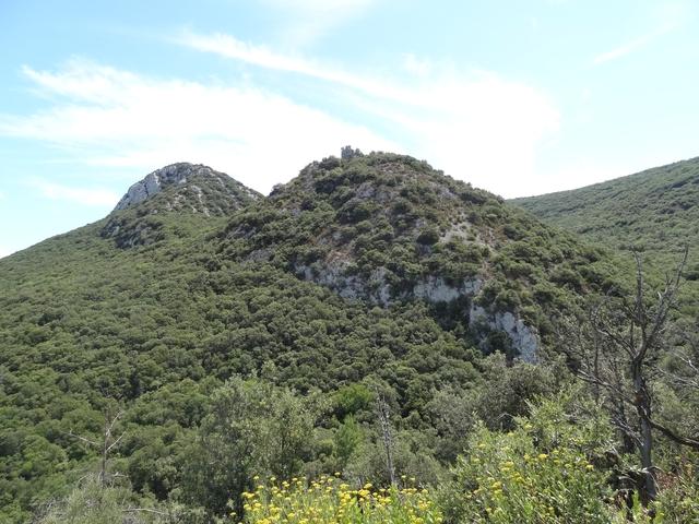 Castel Fizel