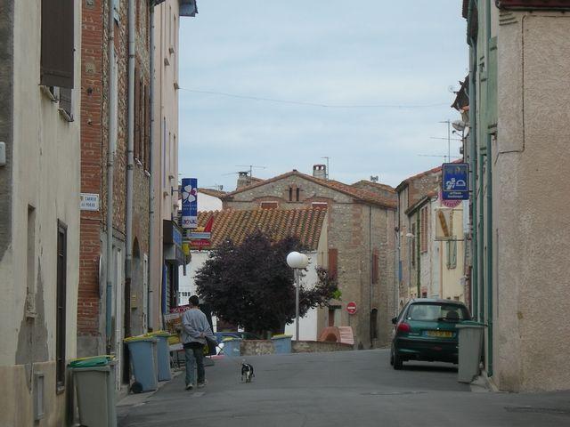 Canohès